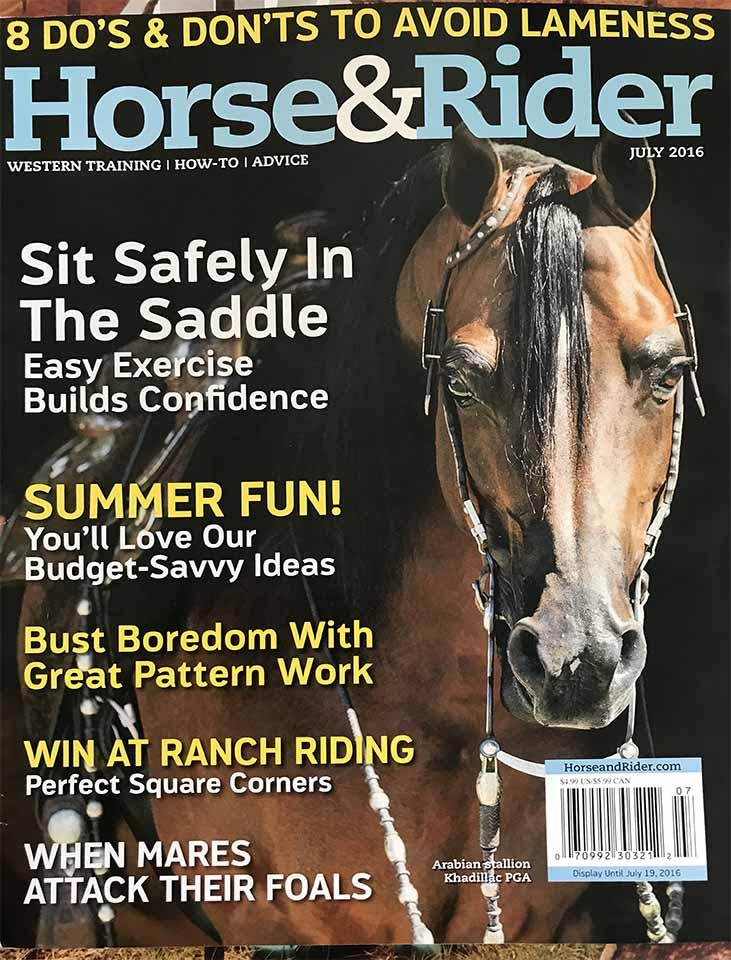 cover Horse and Rider